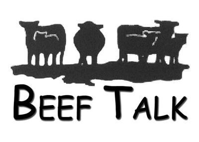 Beef Talk Logo