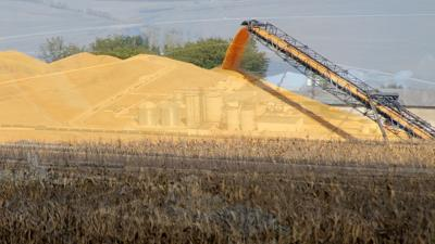 Corn and Ethanol plant composite photo