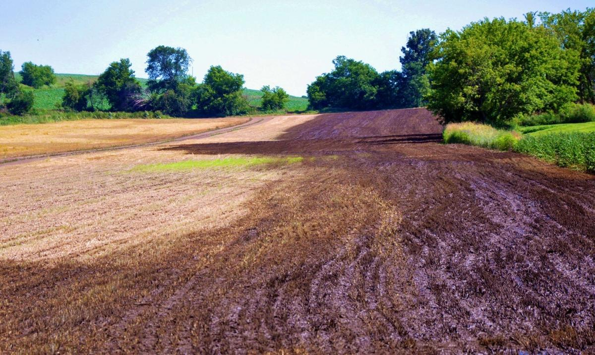 Field with manure applied