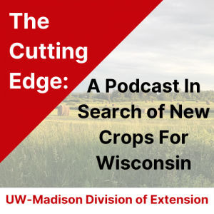 The Cutting Edge Podcast Series