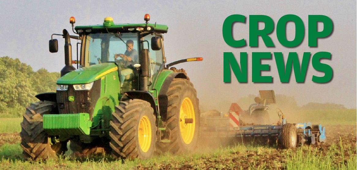 Crop News logo graphic 2