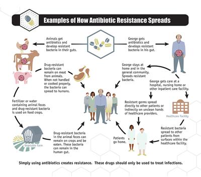 National Summary Data, Antibiotic Resistance
