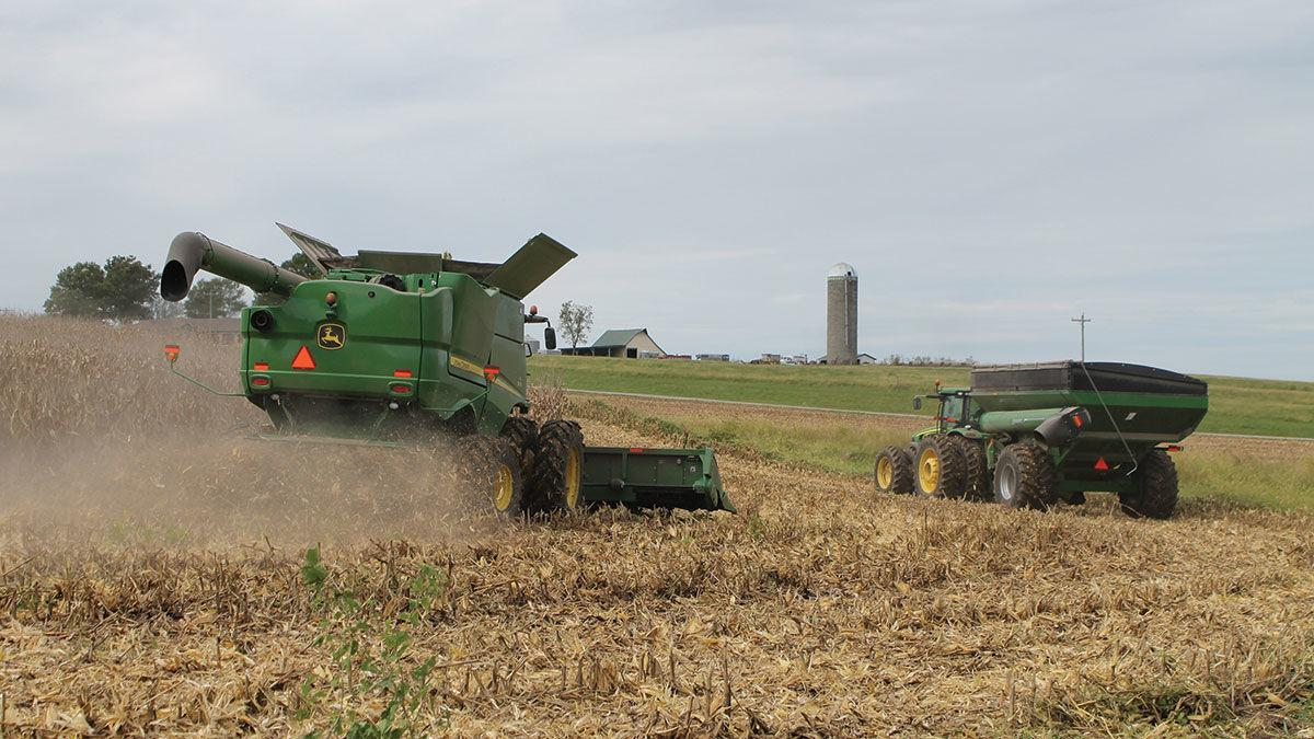 Scott Schreiman harvests a field of corn