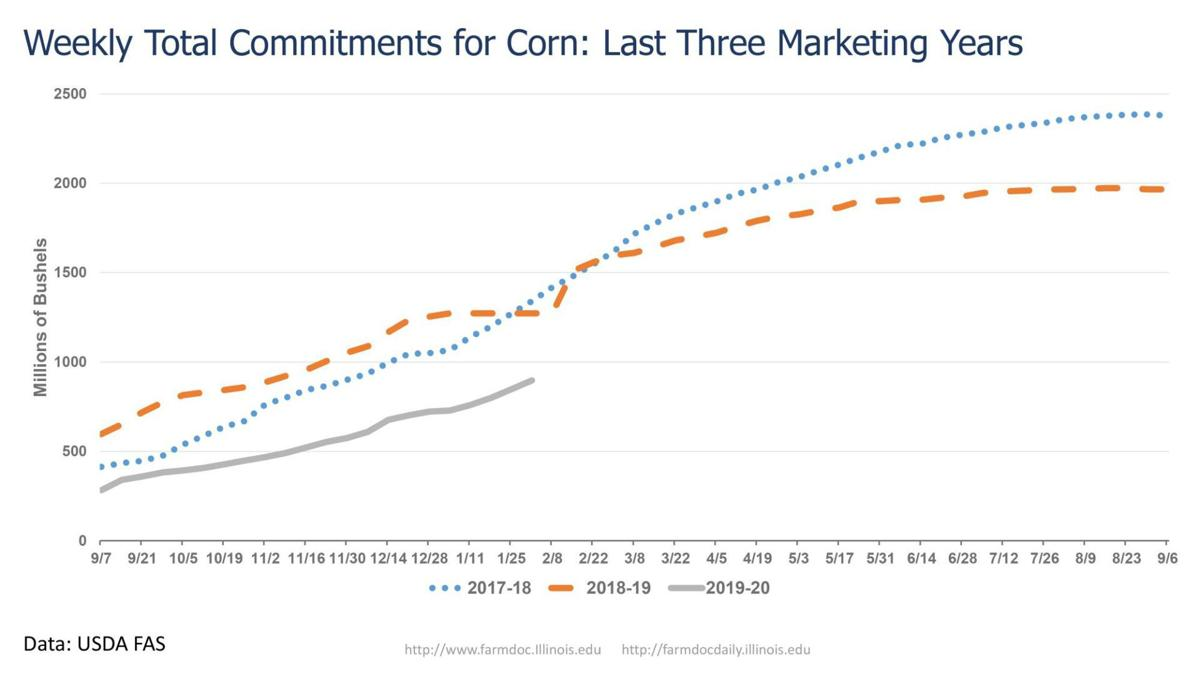 Weekly Total Commitments for Corn