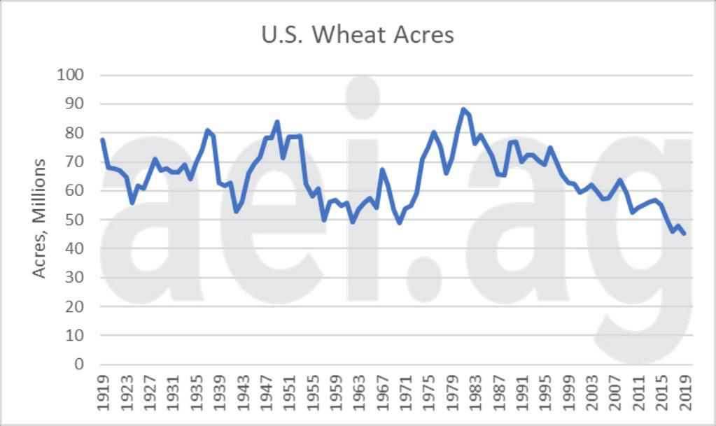 Figure 4. U.S. Wheat Acres (total), 1919 – 2019. Data Source: USDA National Agricultural Statistics Service
