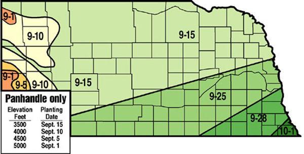 Wheat seeding dates impact yield