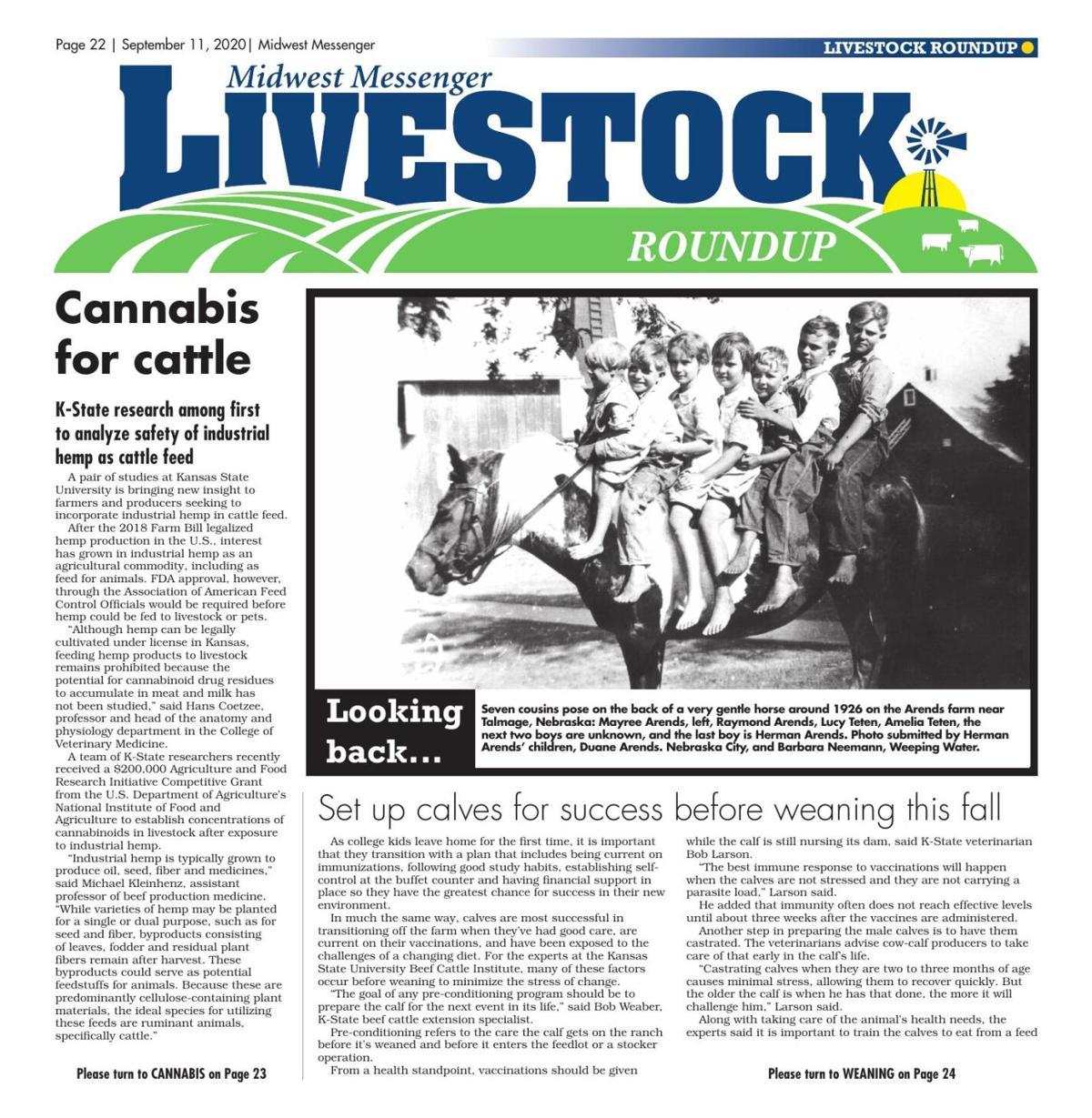 Livestock Roundup 9-11-20