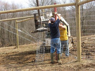 Fence repair 1.jpg