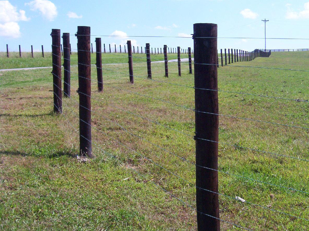 Fence repair 2.jpg