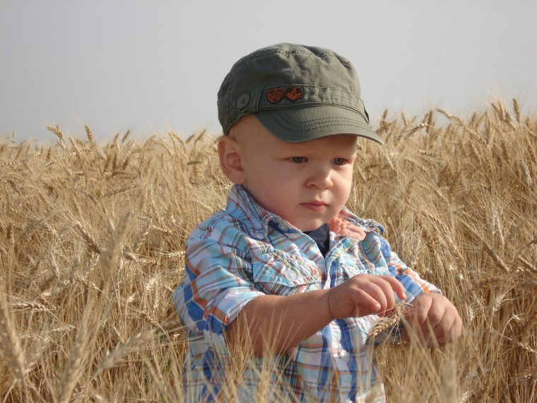 Checking the field prior to combining at 19 months old
