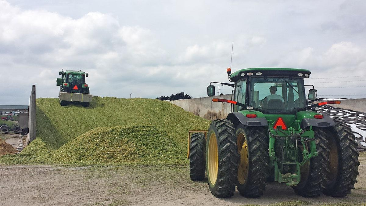 Packing silage