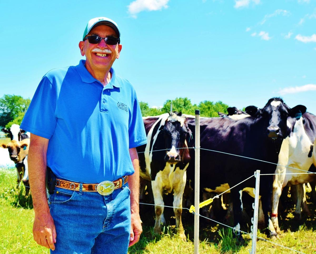 Brian Pillsbury with cows at Schoepp Farms