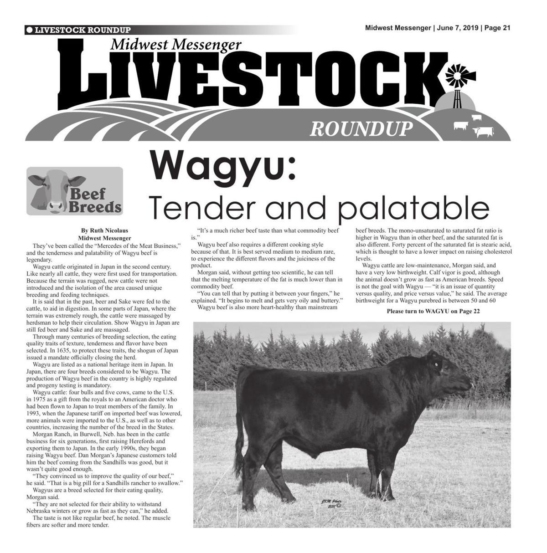 Livestock Roundup 6/7/19