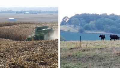 Iowa soils and the landscape