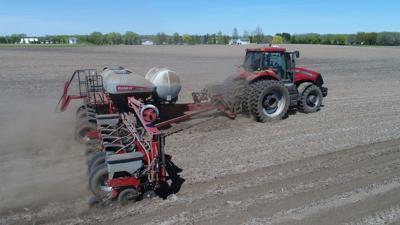 Seed Corn Planting