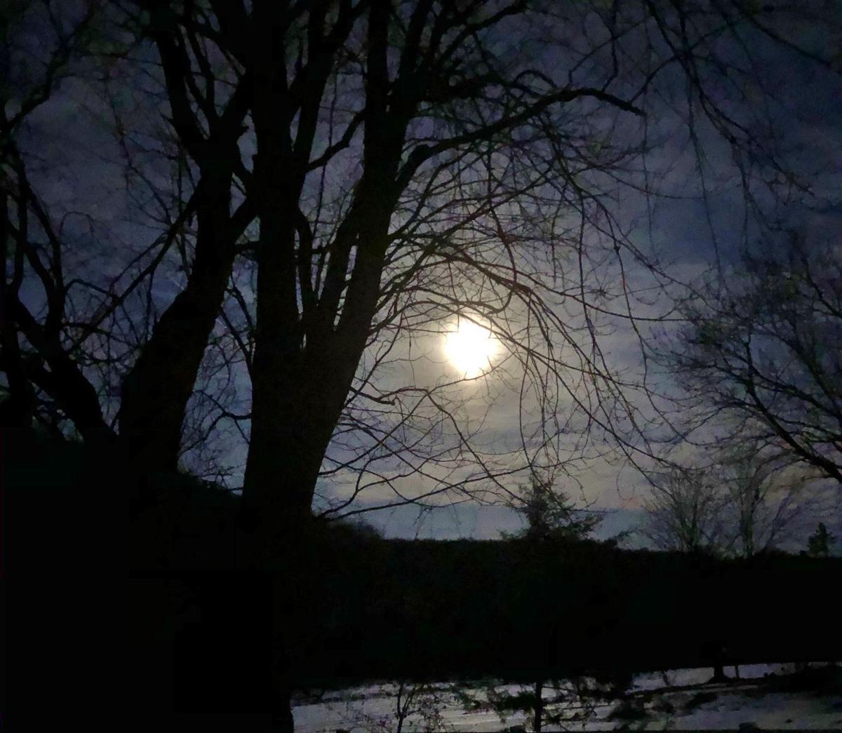 A full moon lights the sky on a dark winter morning.