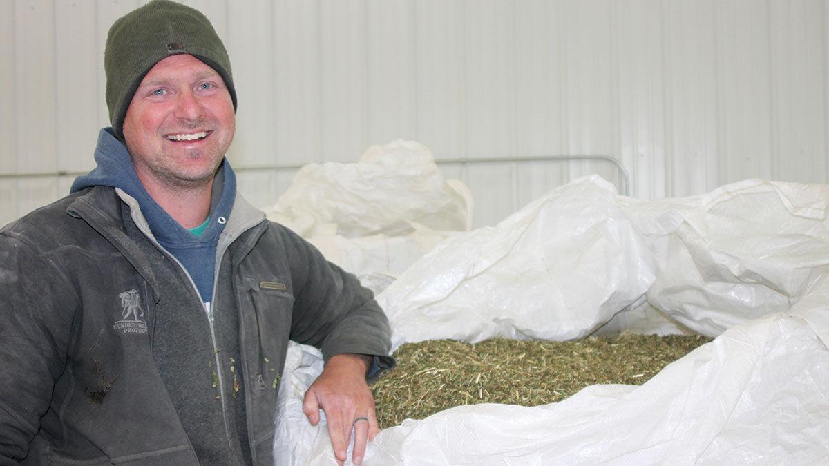 Greg Nicholas started growing industrial hemp