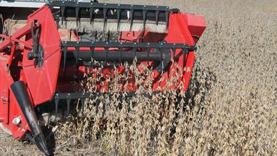 University of Missouri researcher harvests a field of soybeans