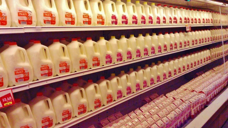 Milk in dairy case in store