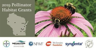 Pollinator Habitat Grant graphic