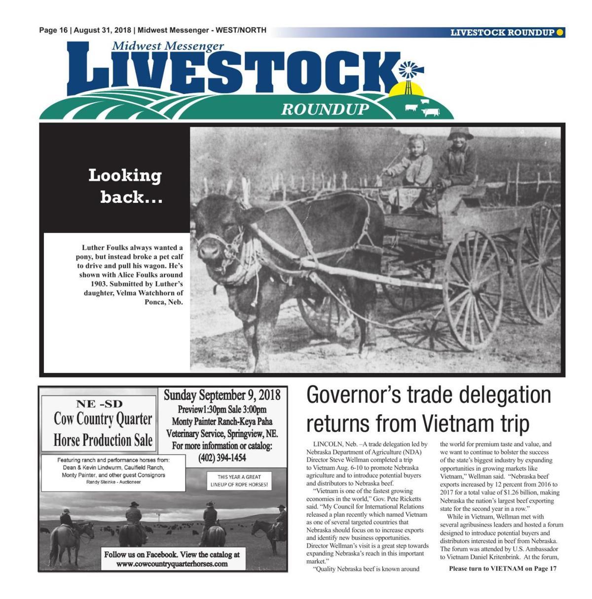 Livestock Roundup 8/31/18 | Midwest Messenger | agupdate com