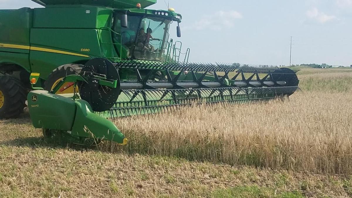AJ Krusemark Triticale Harvest 2021