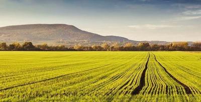 Farm field in front of hill