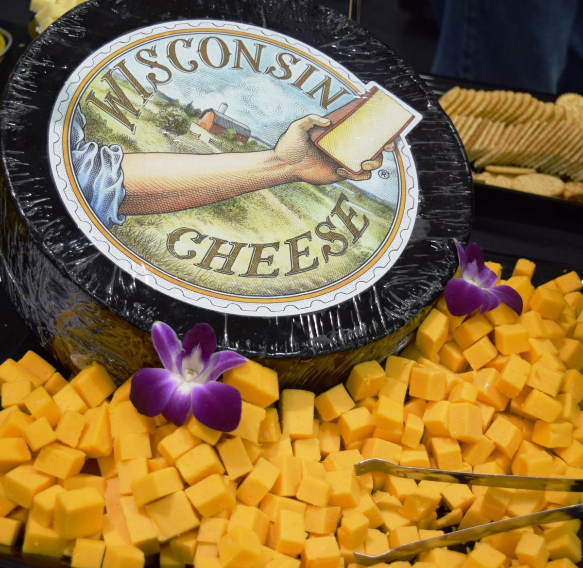 Wisconsin Cheese wheel and cheese cubes