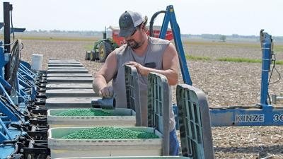 David Webb adds graphite and talc to his soybean seeds