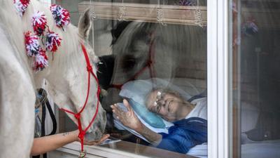 Jewel, a 30-something mare Nursing home visit