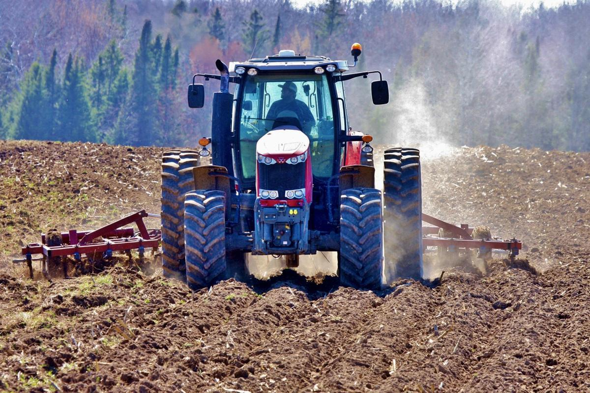 Sam Zimmerman of Ringle, Wisconsin, does field cultivating with tractor