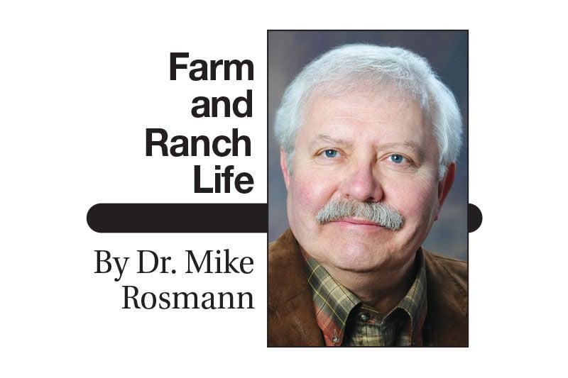 Rosmann Farm and Ranch Life