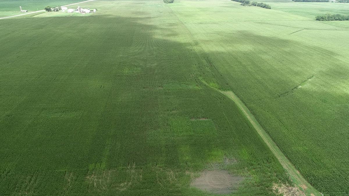 rone photo of a field in North Dakota