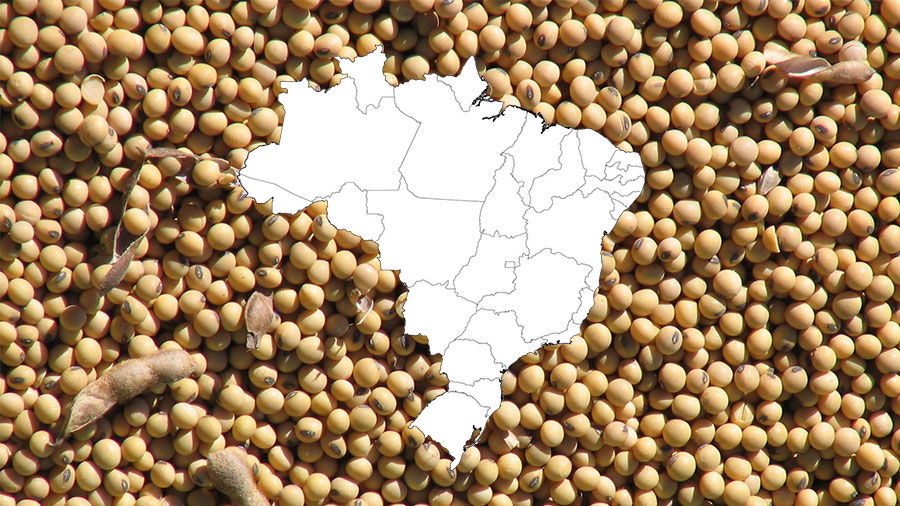 Soybeans with Map of Brazil