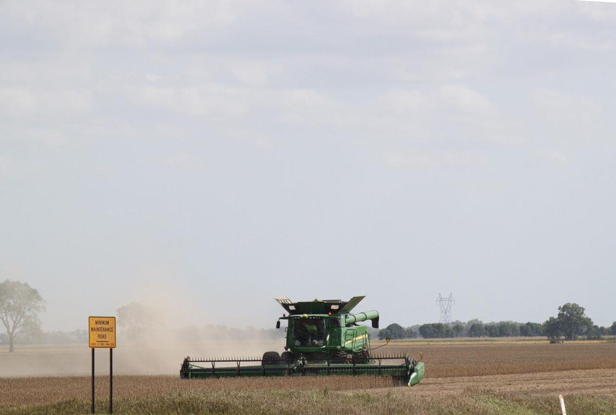Combining soybeans/big sky