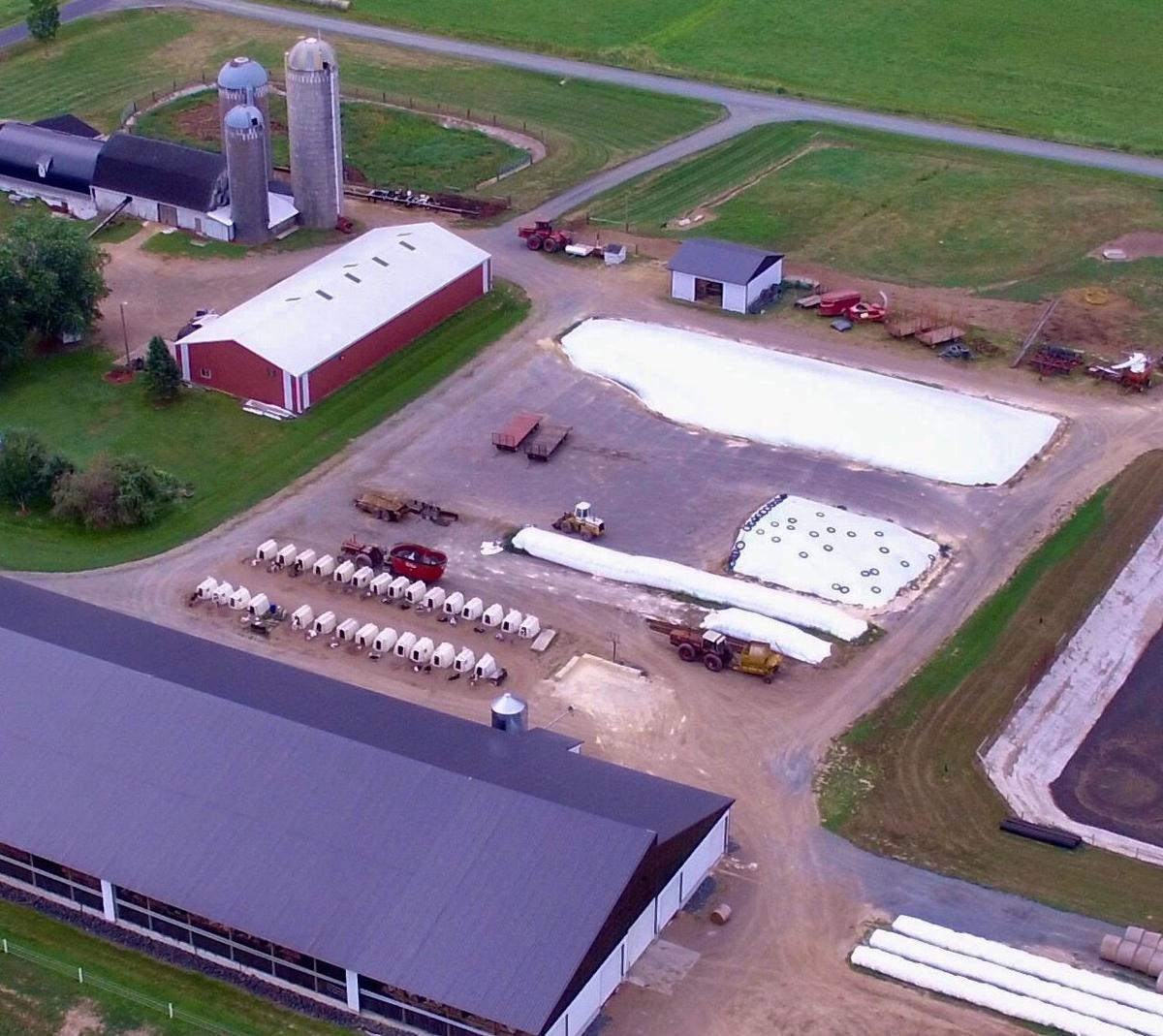 Asphalt feed pad at Ciolkosz Dairy