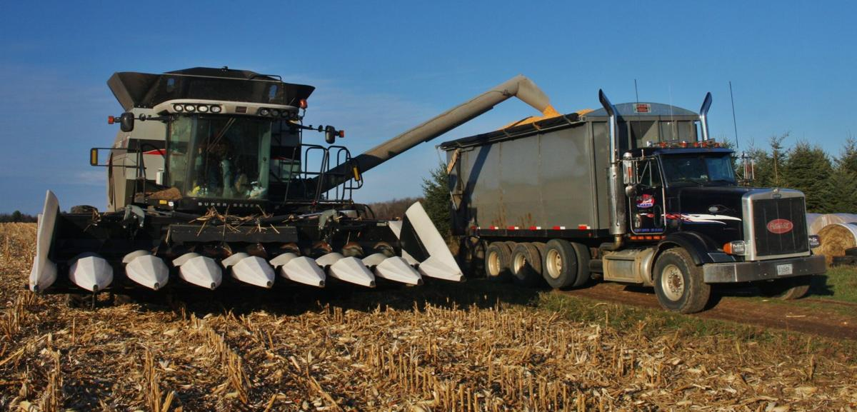 Combine harvests corn and puts in wagon