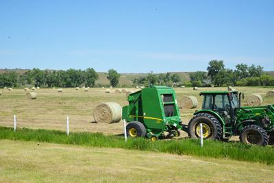 Best Way To Stack Round Hay Bales To Maintain Quality Crop - Bales