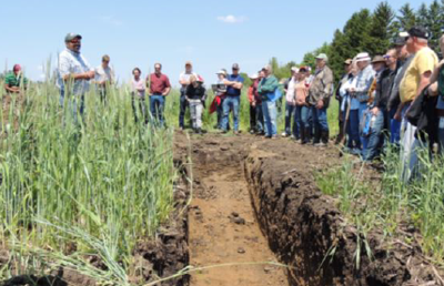 Tom Cotter talks about a trench dug into one of his cover crop fields
