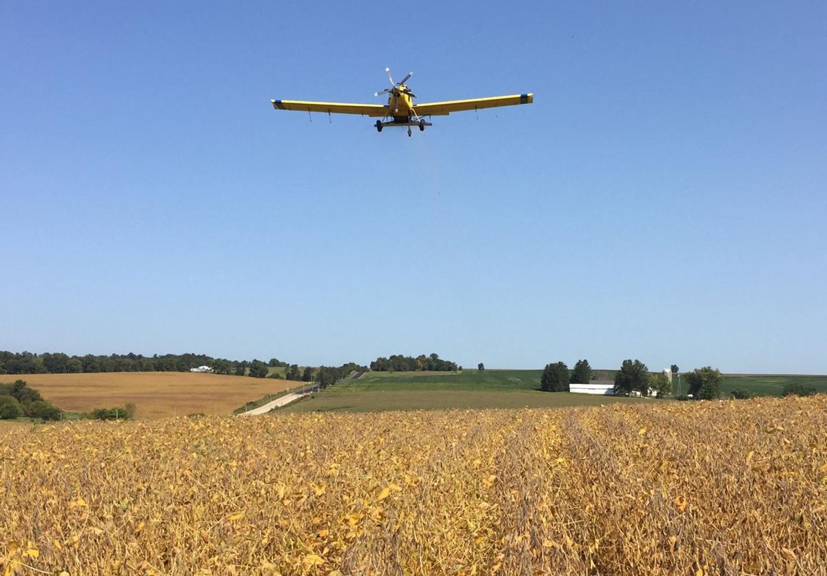Aerial seeding of cover crops in established soybean field