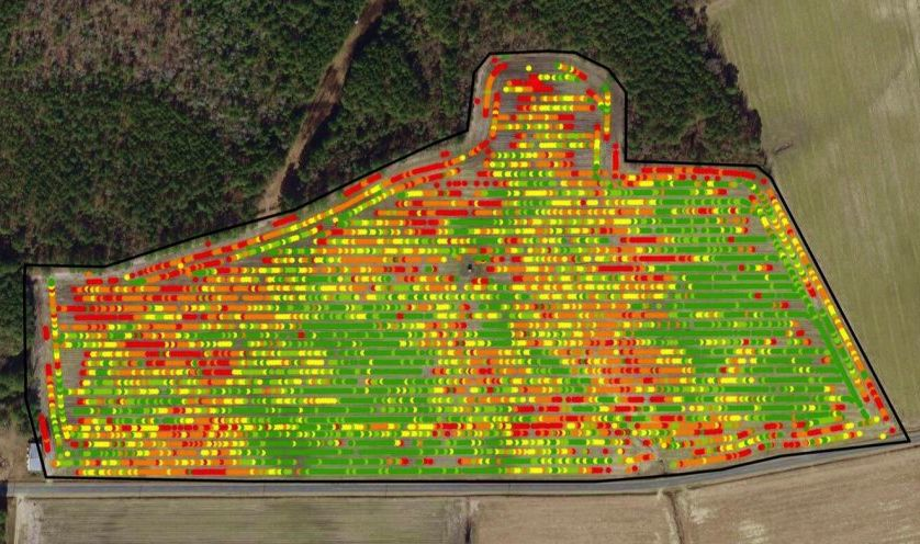 Yield map showing variation in field