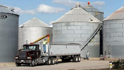 Grain truck on farm storage