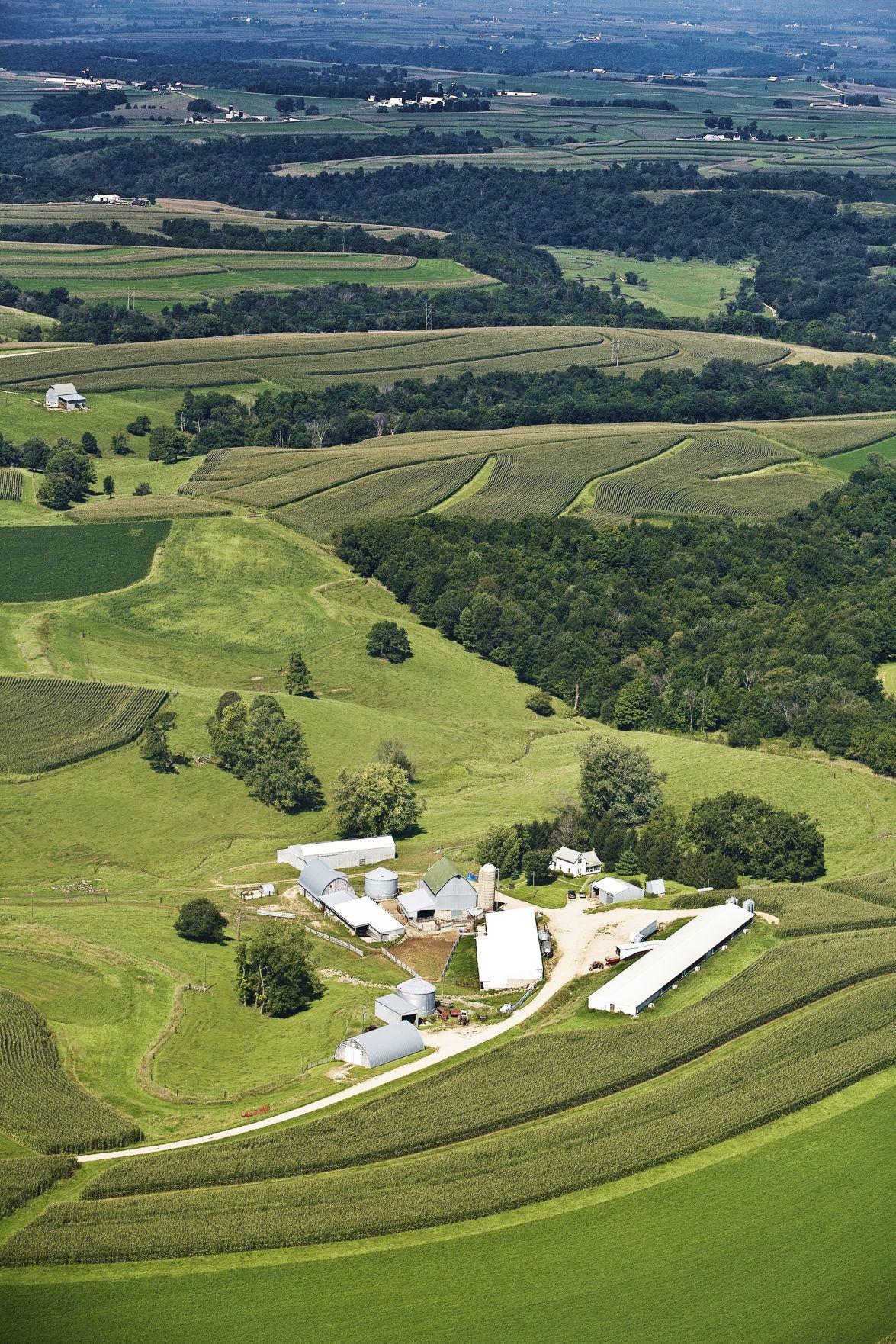 Farmland values decrease