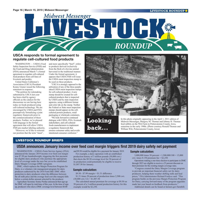 Livestock Roundup 3/15/19