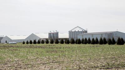 Best practices help control farm odors | Livestock