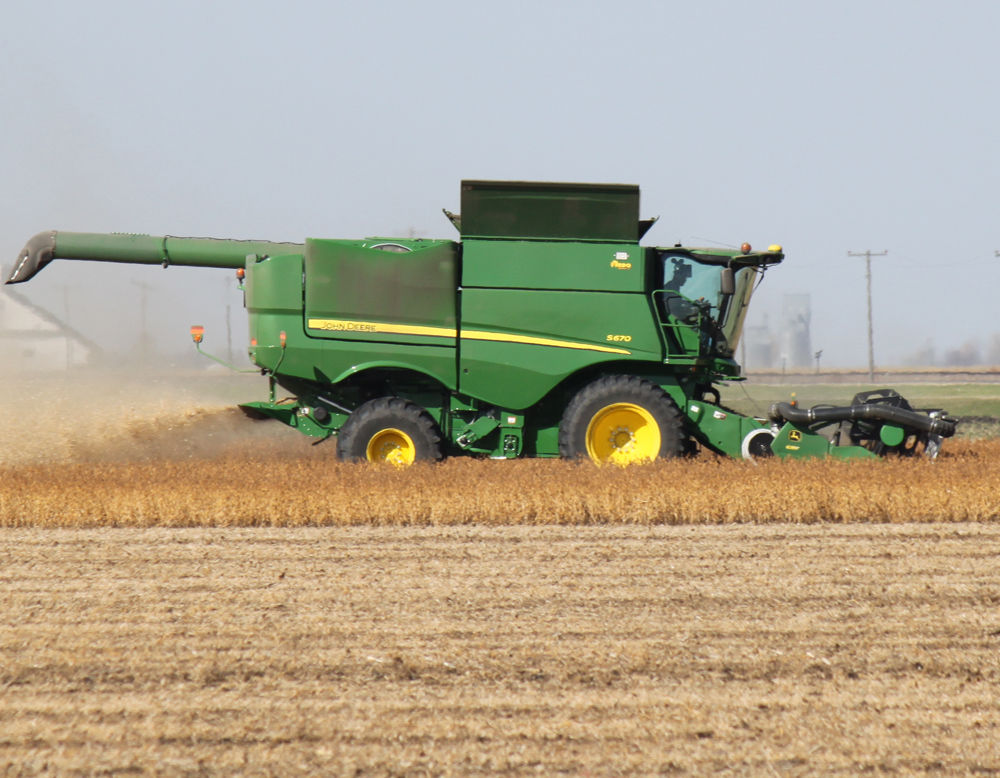 Soybean harvest (copy)