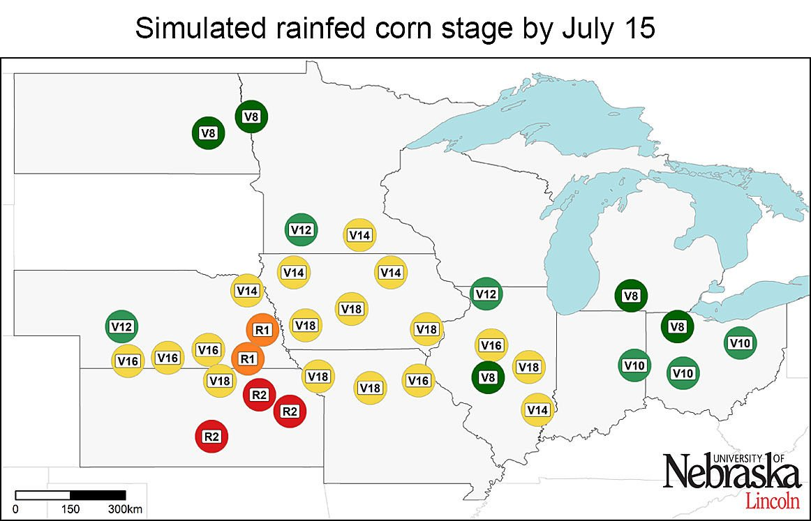 Find the right tool for corn yield predictions