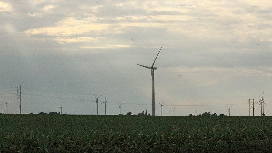 Wind turbines in cornfield