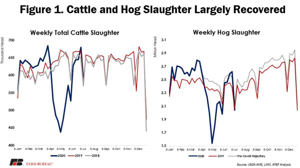 Figure 1. Cattle and Hog Slaughter Largely Recovered