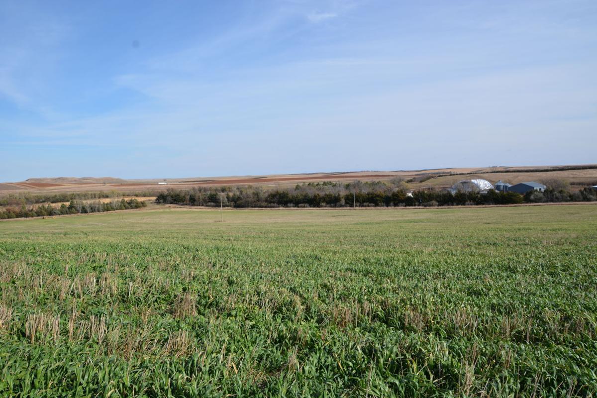 Kelerleber farm